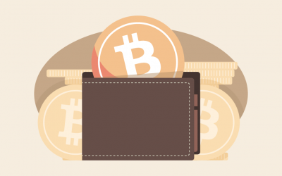 5 Types of Bitcoin Wallets New Users Should Be Familiar with