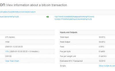 Bitcoin First Transaction 10th Anniversary